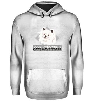 Katzen haben Personal