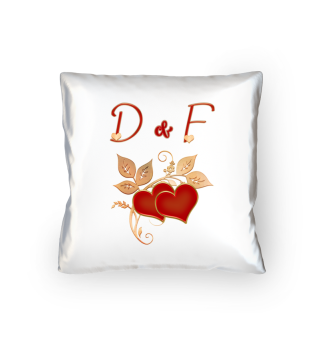 Paarkissen D und F