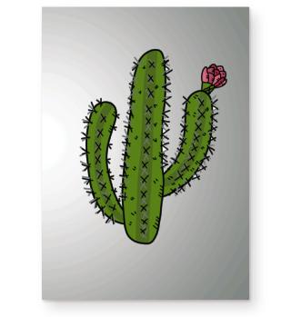 Kaktus mit Blüte cactus