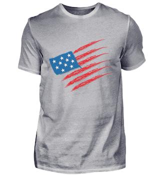 USA Flage