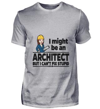 D001-0420B Female Architect Architektin