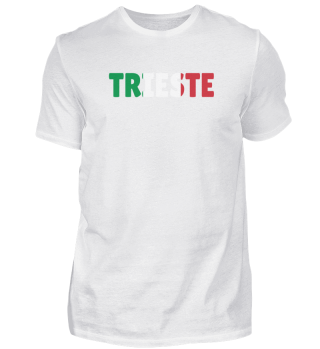 Trieste Italy flag holiday gift