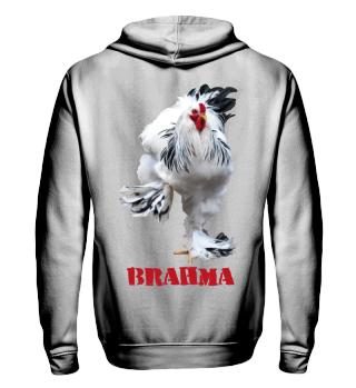 Brahma 2 prints