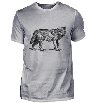 Wolf Zeichnung | Schwarzer Wolf