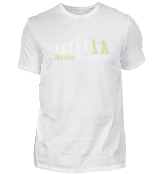 Aikido Martial Arts Evolution Gift