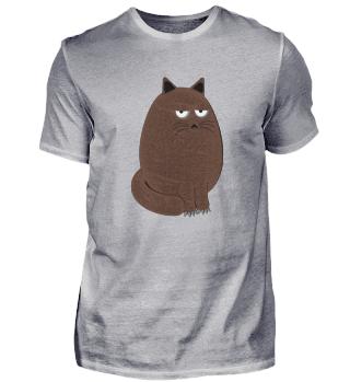 Dicke Süße Katze - sweet cat