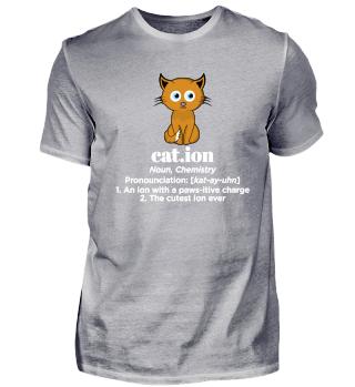 Cat.ion noun, Chemistry pronounciation