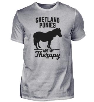 Shetland pony horse riding spell