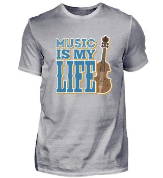 Violin Musician life